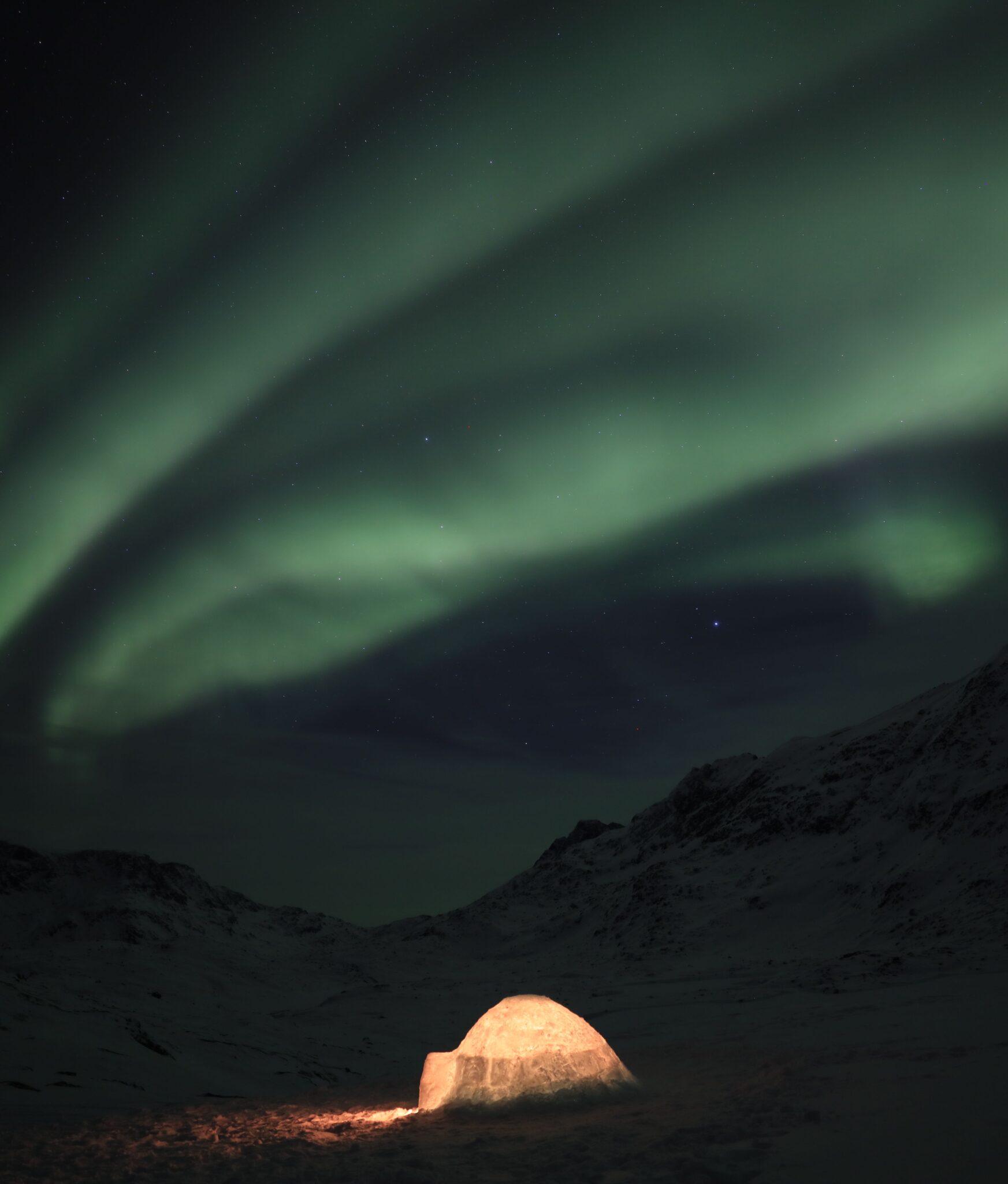 the last igloo